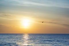 上色黑暗水平的自然照片海运日出 早晨黎明的海景 在美丽的鸟云彩之上颜色及早飞行金子早晨本质宜人的平静的反映上升海运一些星期日 库存图片