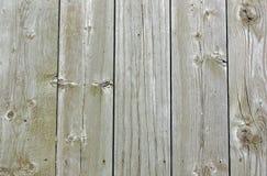 上被风化的杉木 库存照片