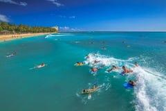 水上运动在夏威夷 库存图片