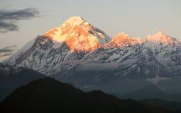 登上道拉吉里峰-尼泊尔晚上panora  免版税图库摄影