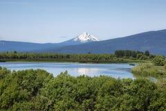 上部克拉马思全国野生生物保护区 库存照片