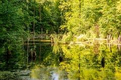 上部池塘, Kytayiv,基辅 免版税库存照片