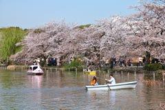 上野公园小船 免版税库存图片