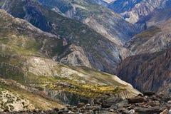 上面的野马区域,尼泊尔 库存照片