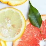 从上面被观看的新柑橘水果切片背景 库存图片