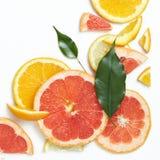 从上面被观看的新柑橘水果切片背景 免版税库存照片