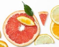 从上面被观看的新柑橘水果切片背景 免版税库存图片