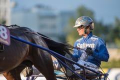 上马具的赛马比赛冠军Björn Goop 库存图片