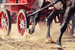 上马具的赛马比赛 免版税库存图片