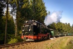 上维森塔尔,德国- 4月02 :Fichtel历史火车  图库摄影