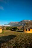 登上` Auyantepuy `在伟大的大草原,委内瑞拉 库存照片