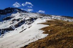登上Bierstadt峰顶  免版税库存照片