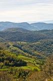登上Bobija,峰顶、小山、草甸和绿色森林风景  图库摄影