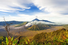 登上bromo batok semeru火山, Java印度尼西亚 免版税库存照片