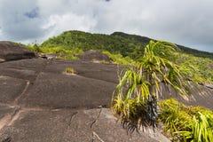 登上Copolia, Mahe,塞舌尔群岛 图库摄影
