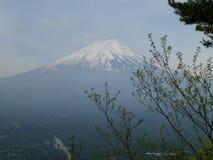 从登上Tenjo,箱根,日本的富士山 免版税库存图片