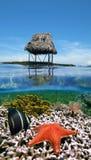 下加勒比小屋生活海军陆战队员 免版税库存照片