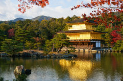 下午太阳亲吻的金黄亭子, Kinkaku籍寺庙,京都,日本 免版税图库摄影