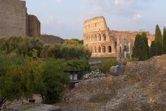 下午太阳光的罗马罗马斗兽场 图库摄影