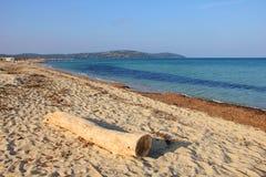 下午海滩安静 库存图片