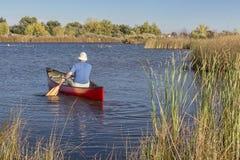 下午独木舟用浆划 库存图片