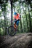 下坡山骑自行车 免版税库存照片