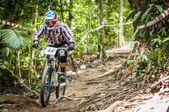 下坡自行车体育 库存图片