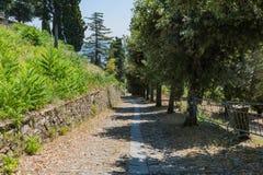 下坡路在科尔托纳,意大利 免版税库存照片