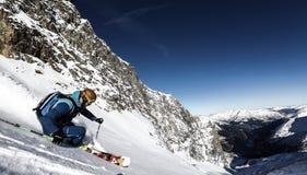 下坡freeride滑雪场地外的粉末滑雪雪 免版税库存照片