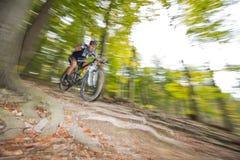 下坡mountainbiking的越野通过森林 免版税库存图片