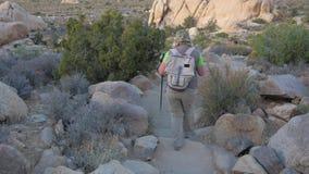 下来妇女的远足者沿足迹的小山在莫哈维沙漠,后面看法 股票录像