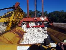 下来建造者棉花模块装箱 免版税库存照片