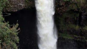 下来掀动与绿色植被和洞的夏威夷瀑布 股票录像