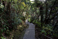 下来道路Mt Nokogiri 库存图片
