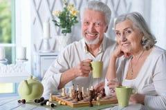下棋的资深夫妇 免版税库存照片