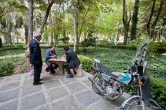 下棋的年长人在绿色公园 免版税库存照片