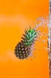 下潜菠萝 库存照片