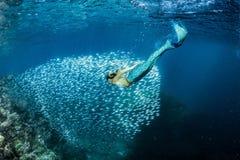 水下白肤金发的美丽的美人鱼的潜水者 库存照片