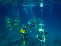 水下的下潜 免版税库存图片