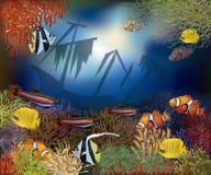 水下的世界盖子设计,传染媒介 库存照片