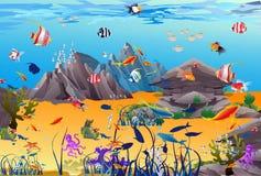 水下的世界 库存照片