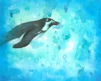 水下的企鹅 免版税库存照片