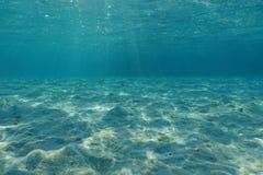 水下的含沙海底盐水湖太平洋 库存图片