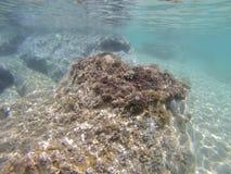水下的场面,皮立翁山,希腊 图库摄影