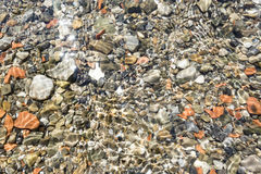 水下的小卵石 免版税库存图片