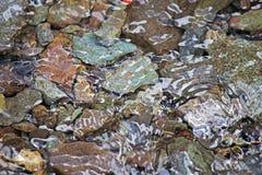 水下的岩石 免版税库存照片