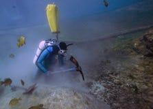 水下的捡取器-漩涡春天 免版税库存照片