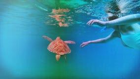 水下的极乐 库存图片
