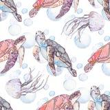 水下的海样式 海龟和水母 海洋 免版税库存图片