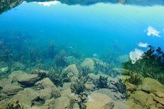 水下的礁石场面在Lugu湖,被倒置的反射在清楚的水中 免版税库存图片